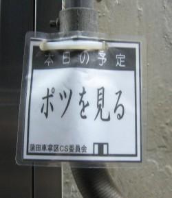 20090128_005.jpg
